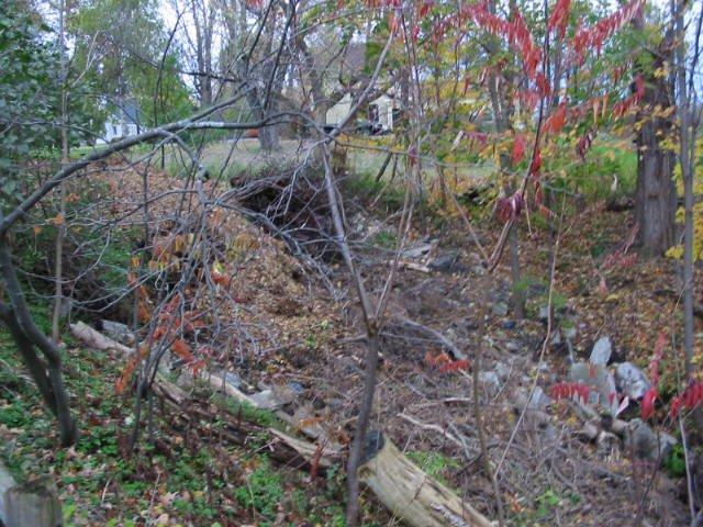 Dweez's trail 1