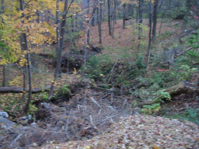 Dweez's trail 2