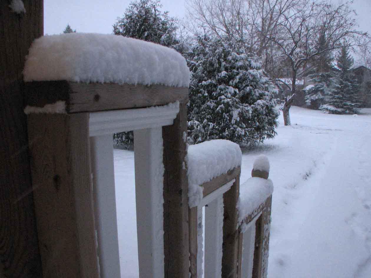 SNOWED::D:DD:D