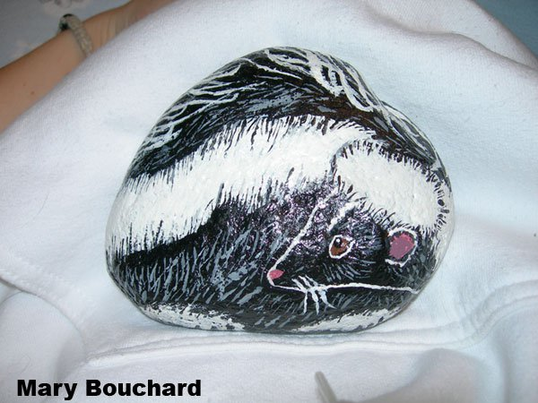 A Rock Skunk..!?