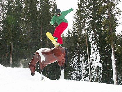 Horse Jib @ WP