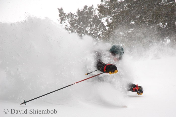 Skied some more pow