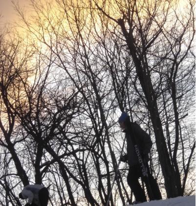 Jibbin in the park