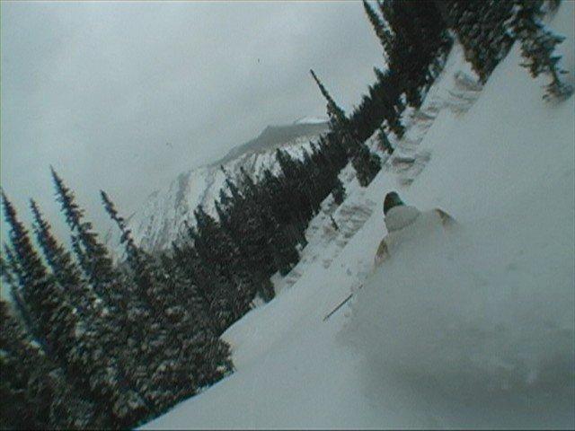 Skiing pow!