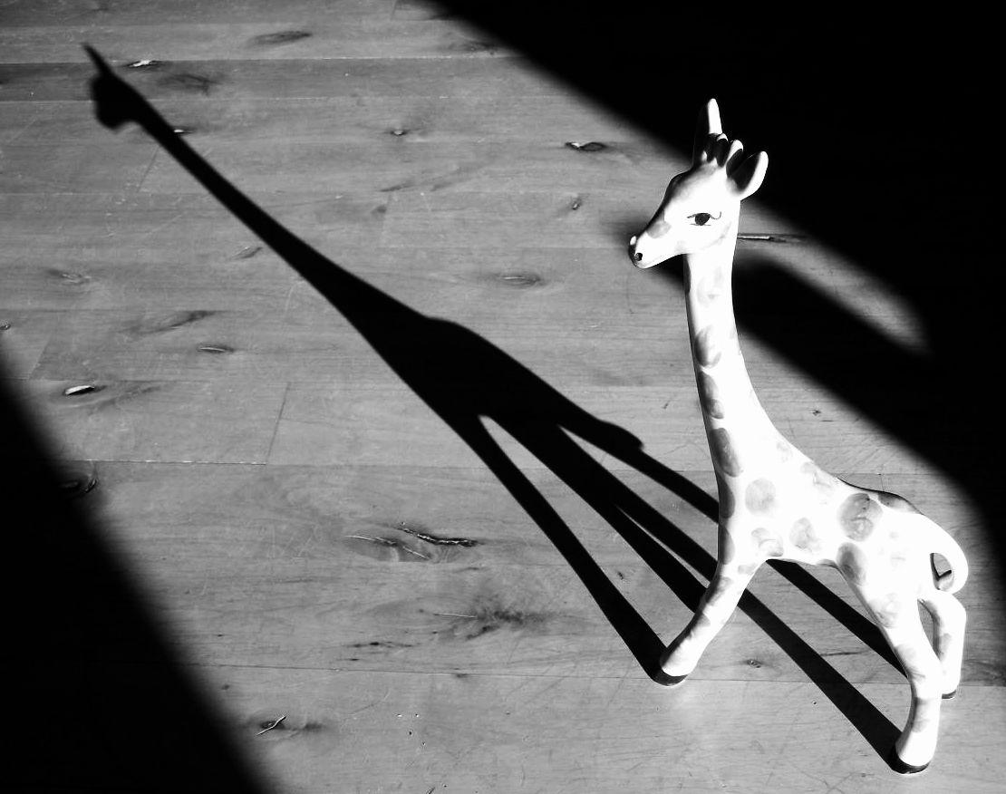 Shadow Graffe