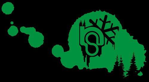 Some logo 2 (corel draw)