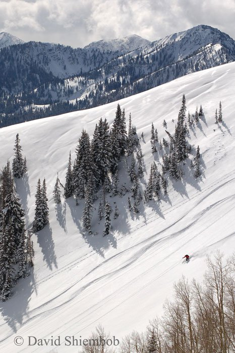 Nice skiing today