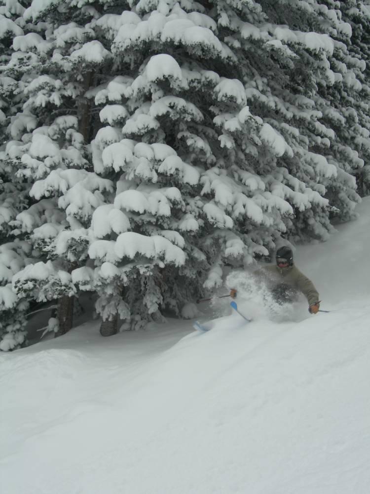 Troy skiing some pow next to a tree