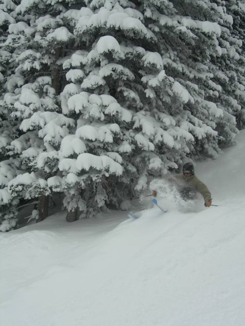 Troy skiing some pow next to a tree