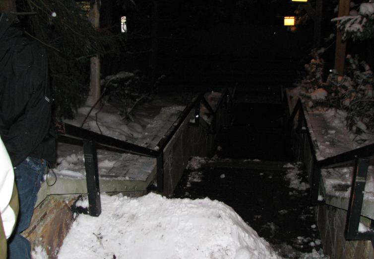 Hilton 5 kink handrail