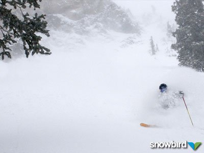 """116"""" of new snow since February 10"""