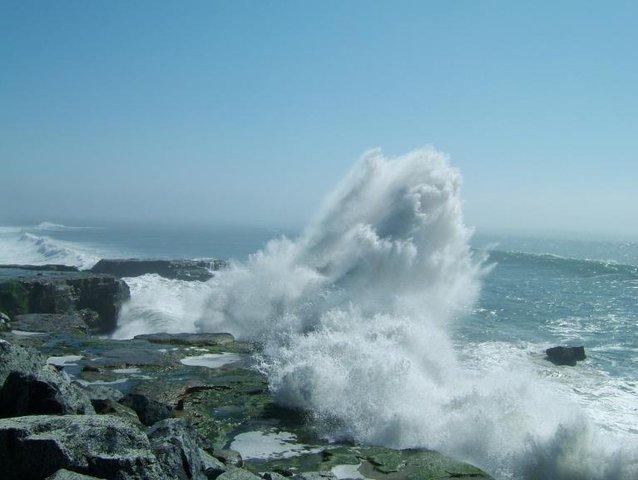January waves are bigggg.