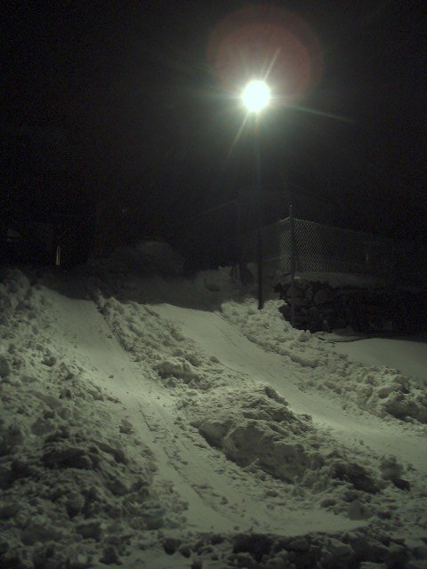 My backyard