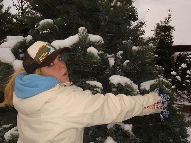 Professional Tree Hugger