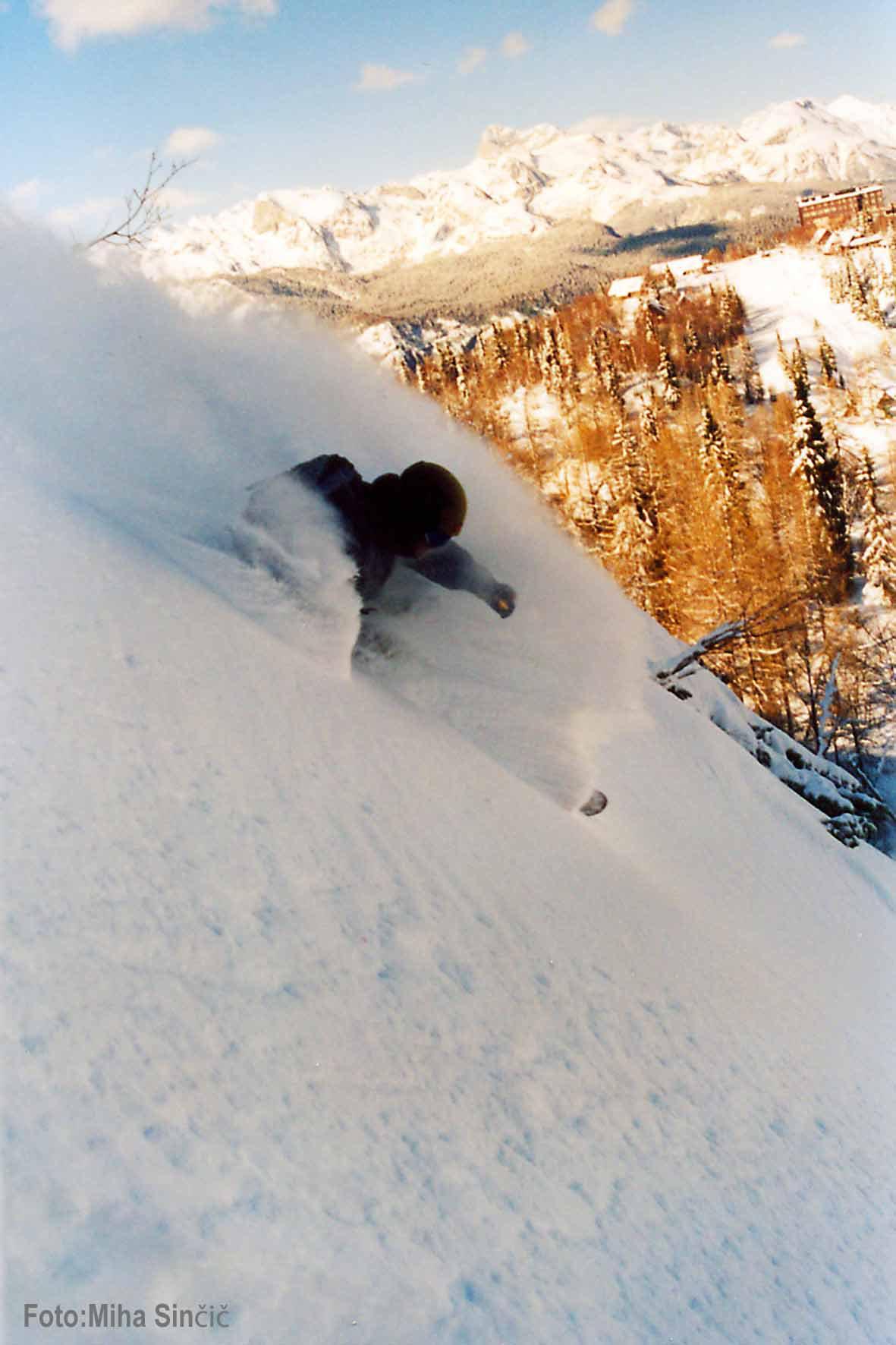 Vogel2 22.3.2007