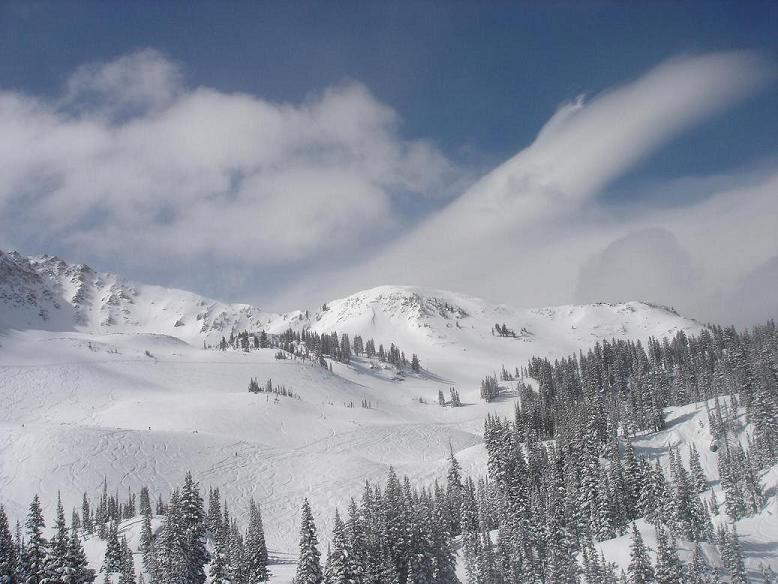 Snowbird powder day