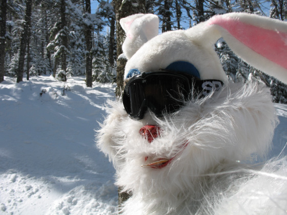 Finding the Easter Bunny in Ripsaw @ the loaf