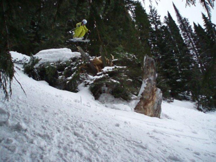 Sweet drop in cedar bowl