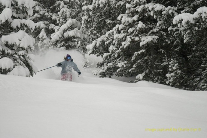 Powder is our friend
