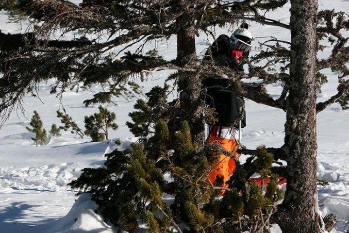 Me (lumberjack in bc)