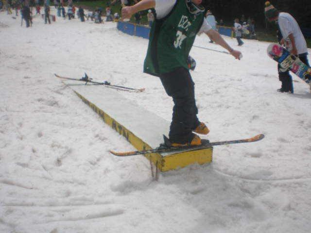 Lost ski
