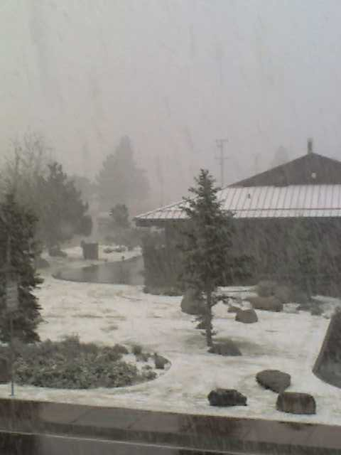 Snowing in mammoth