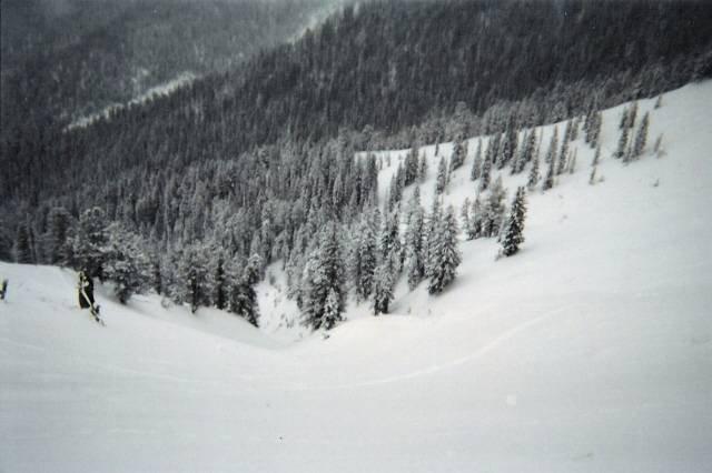 View of Christmas Tree Bowl