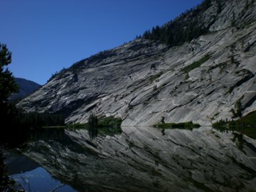 Lace Merced