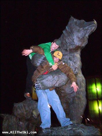 Teddy bear crisis