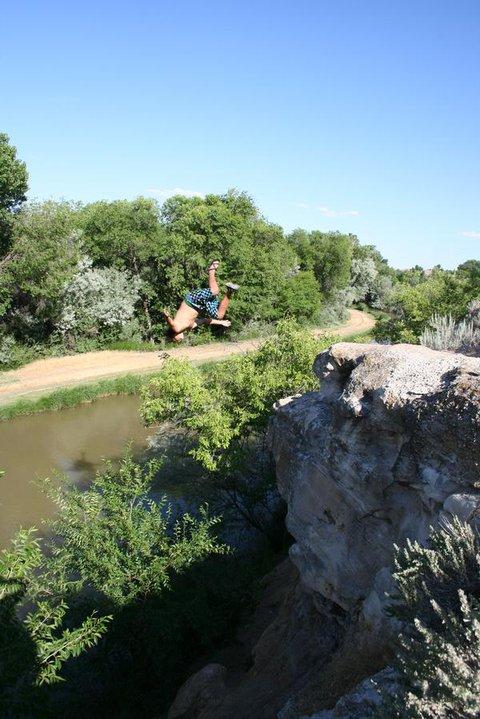 Flipa over tree!