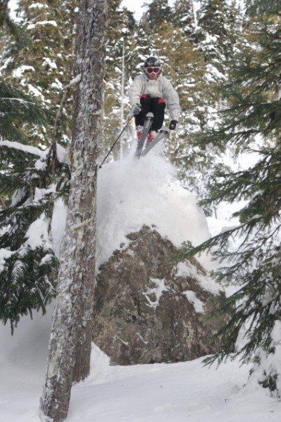 Whistler tree drop