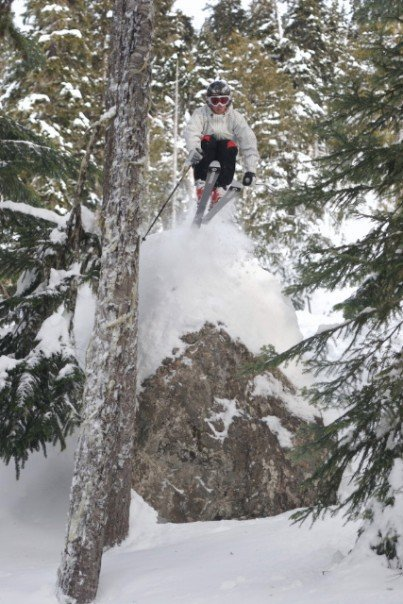 Whistler tree drop