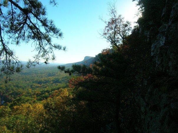 Sweet View