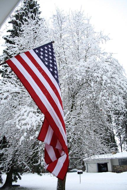 US flag & snow covered tree