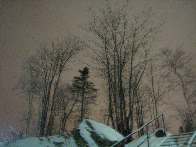 Night sky, Corner Brook