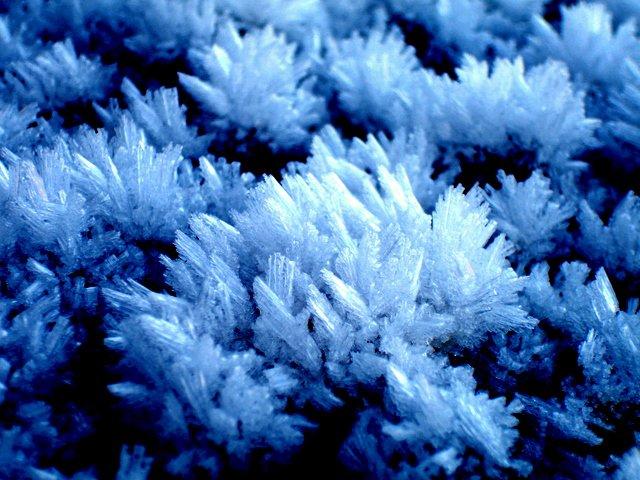 Hoare Frost