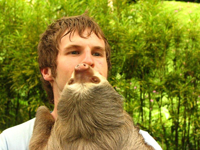Slothy Boddy