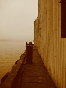 Harbor shot