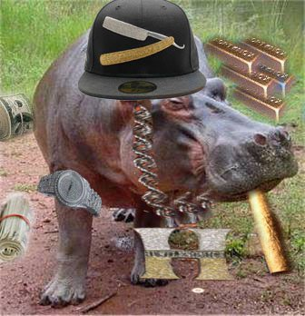Hippo steez