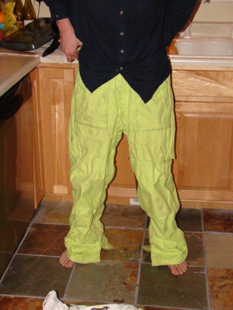 Ronin ski pants