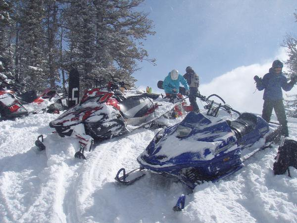 Another Day on the sleds
