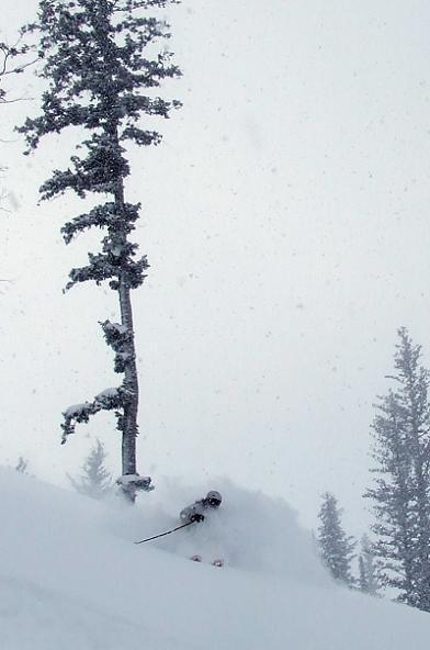 Blower at Powder Mountain