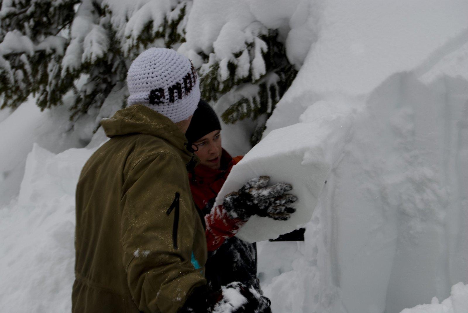 Saga Snow layer