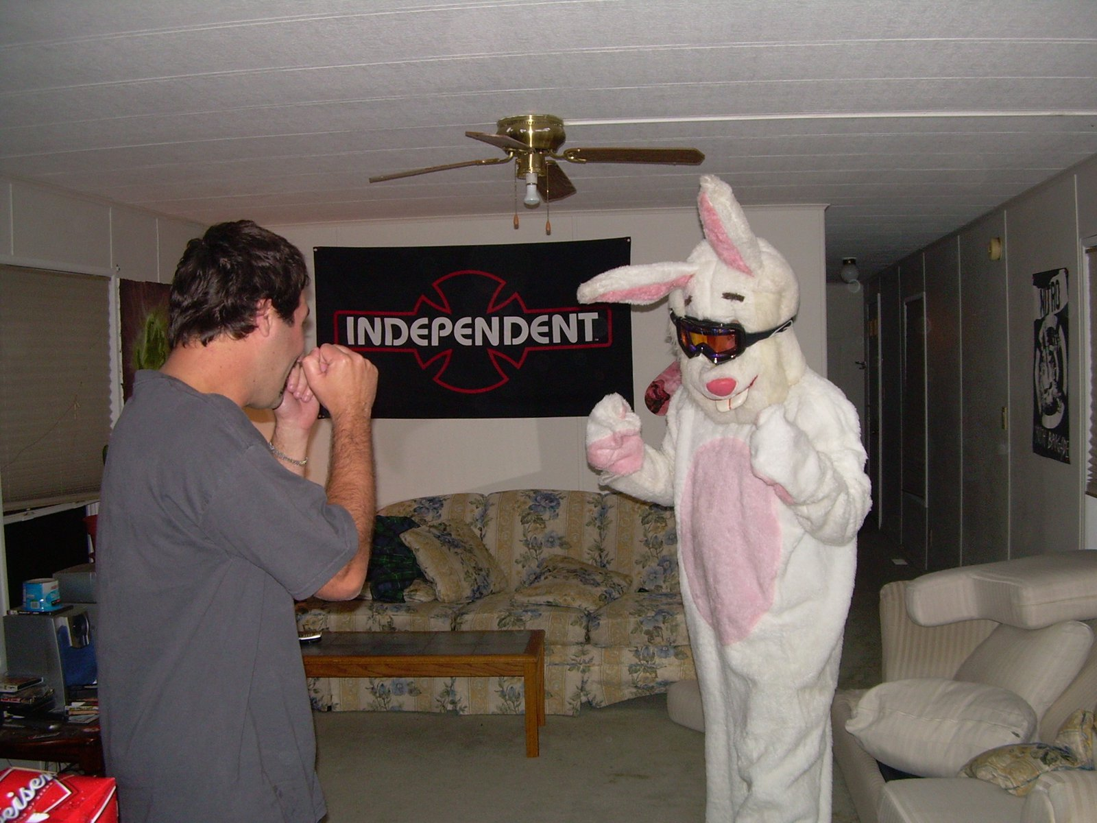 Bad ass bunny