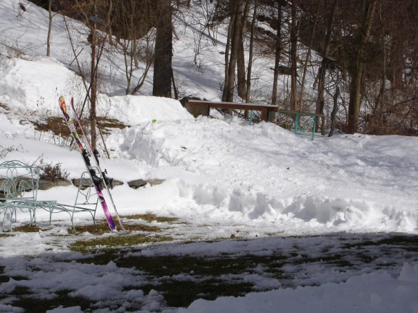 Spring 07 yard setup