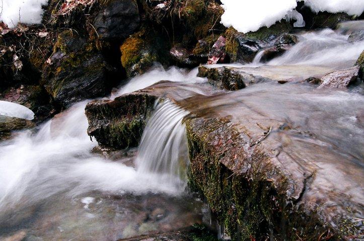 Log in Creek