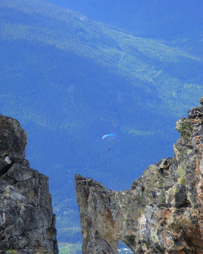 Paraglider at the Top of Whistler