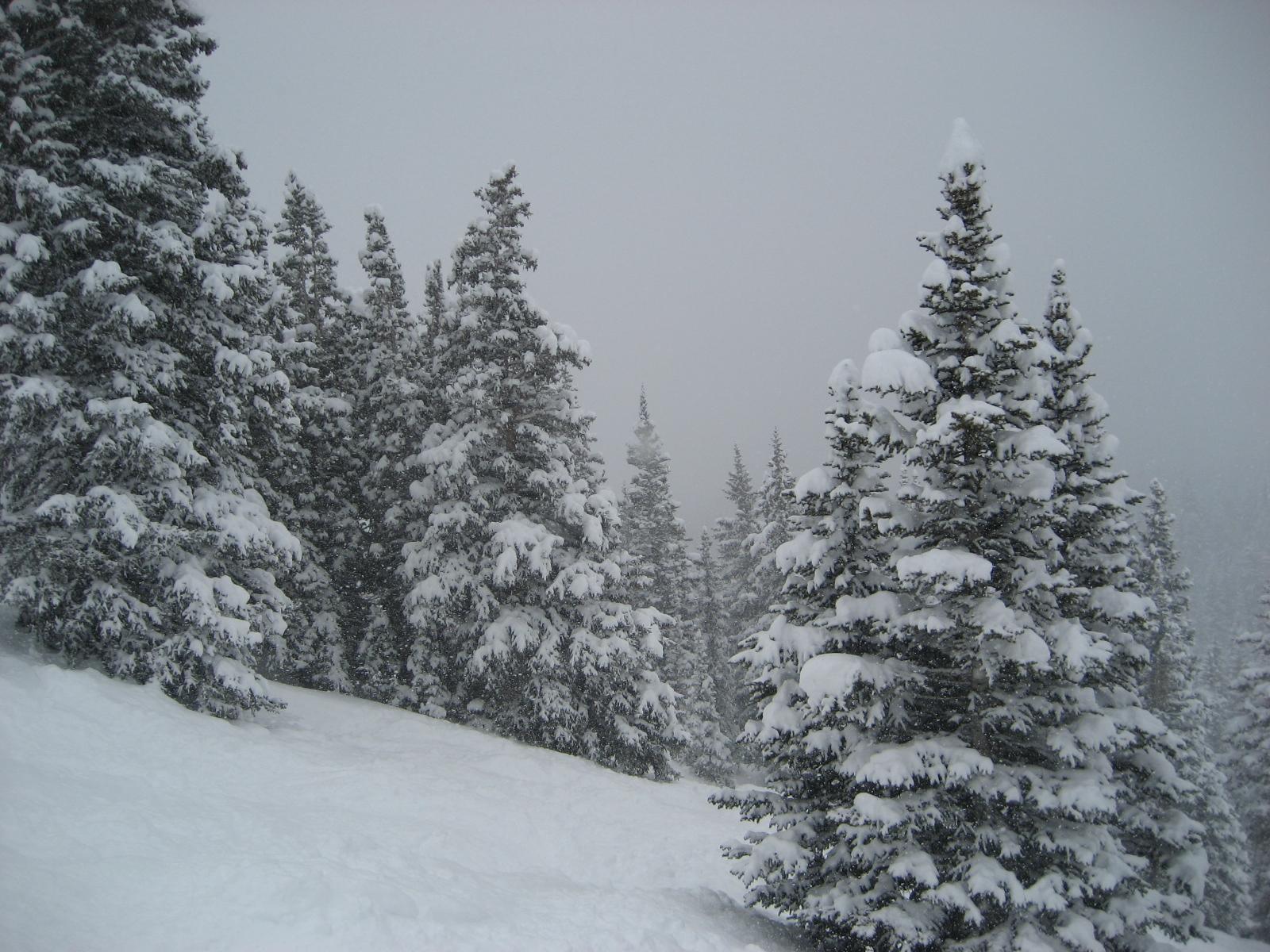 Pow at breck 3.14