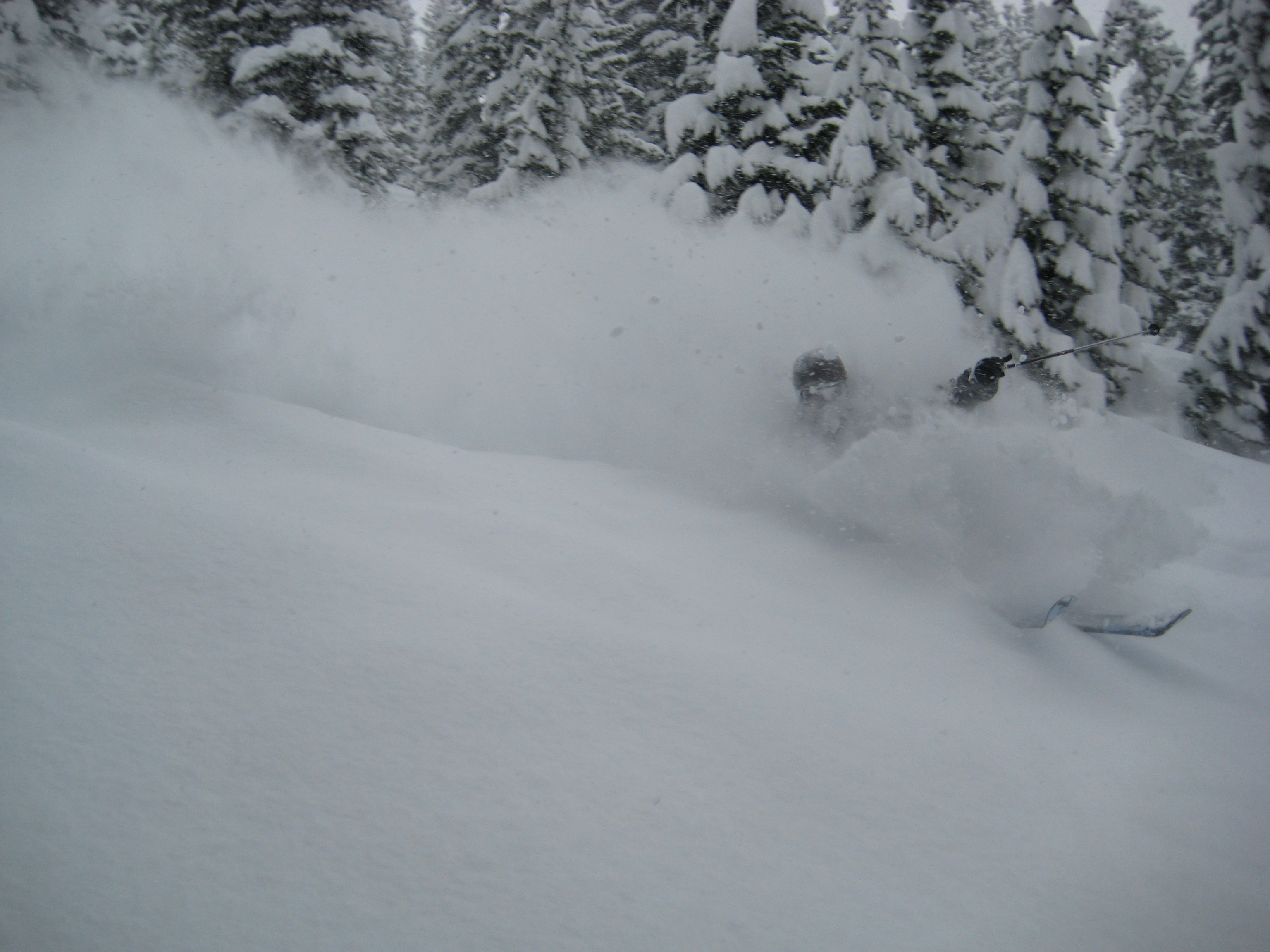 Skiing the pow