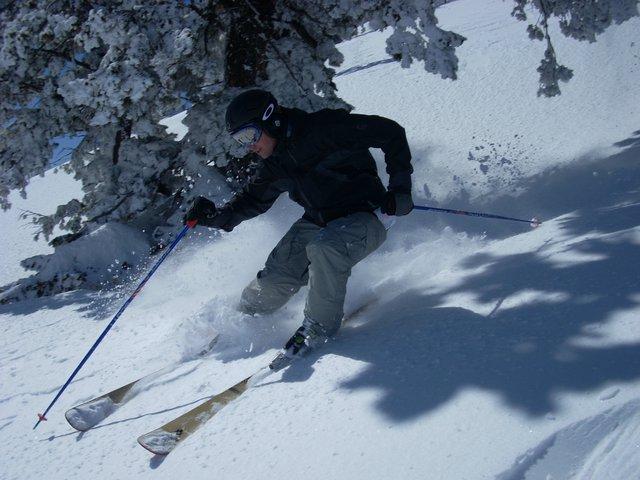 Cat Trip Powder Mountain